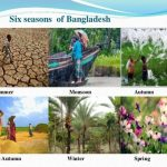 Seasons In Bangladesh
