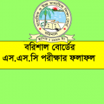 Barisal Board SSC results 2020