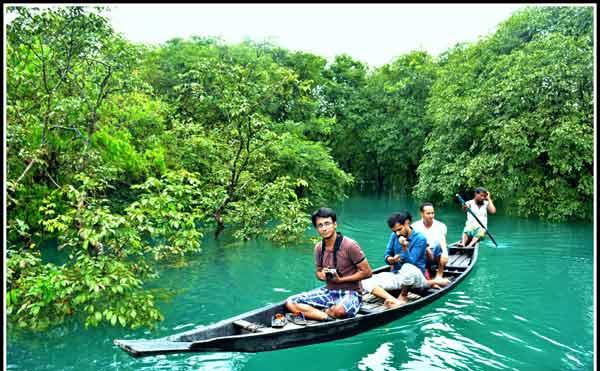 Ratargul Forest Sylhet