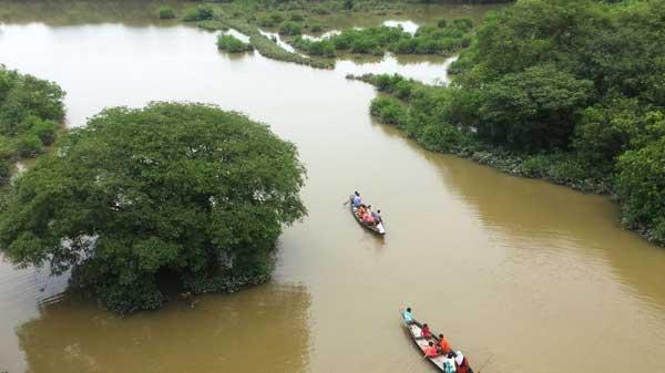 Ratargul Swamp Forrest Sylh