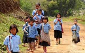 Compulsory Primary Education Composition
